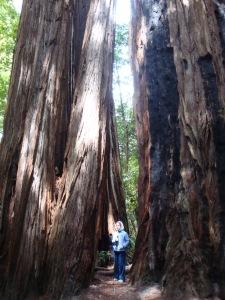 California_09 183