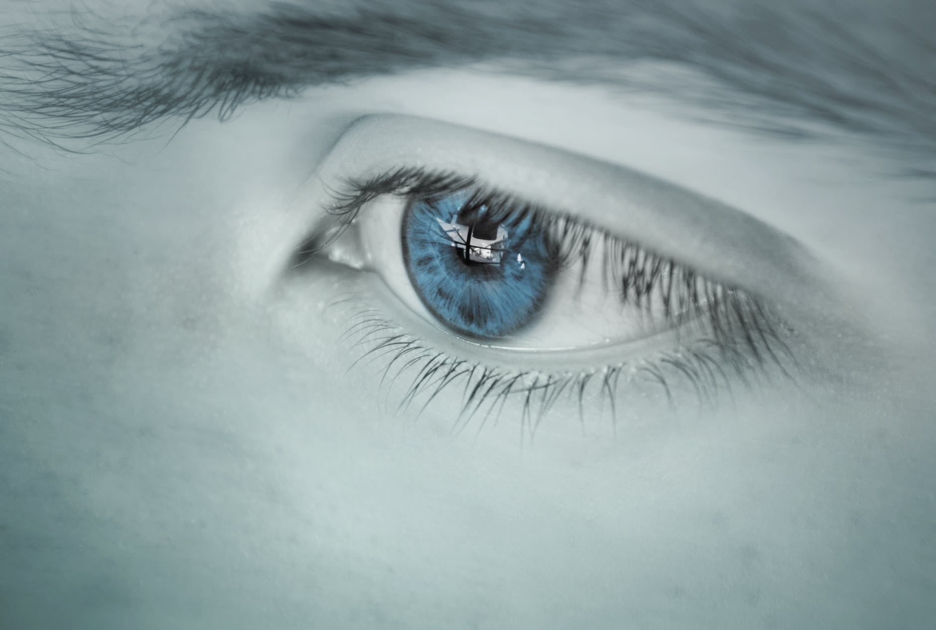 adult beautiful blue color blue colour